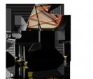 פסנתר כנף שימל  SCHIMMEL C213 Tradition גרמניה