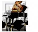 פסנתר כנף  שימל  SCHIMMEL K195 Tradition גרמניה