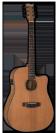 גיטרה אקוסטית מוגברת  ESP D-320E NS