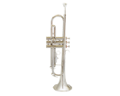חצוצרה GOLDEN CUP JHTR1401N nickel plated