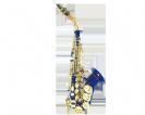 סקסופון סופרן (GOLDEN CUP JHSS1100D curved soprano saxophone(double colors