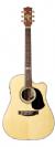 גיטרה אקוסטית מוגברת  MATON TE-1